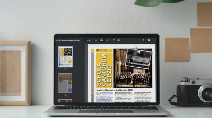 Infopost Frühjahr 2013 (Preview)