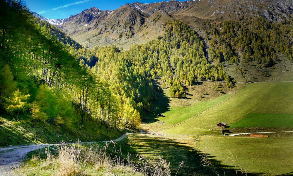 Blick Von Einem Hügel In Ein Grünes Tal