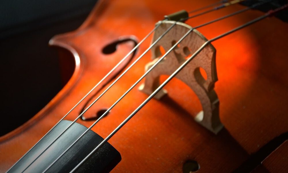 Detailaufnahme Eines Cellos