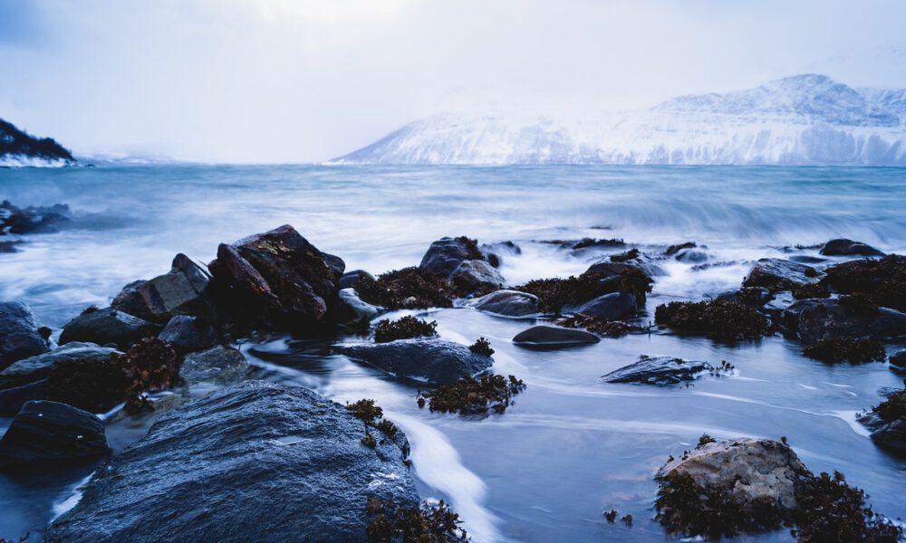 Felsige Küste Im Winter