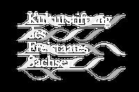Kulturstifung Sachsen (Logo)