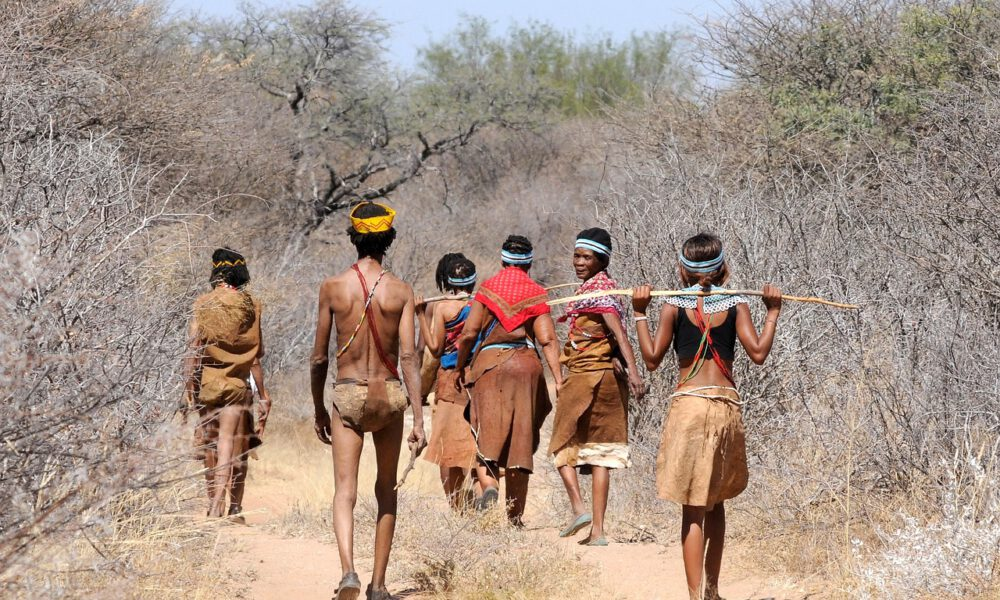 Eingeborene Eines Naturvolks In Botswana