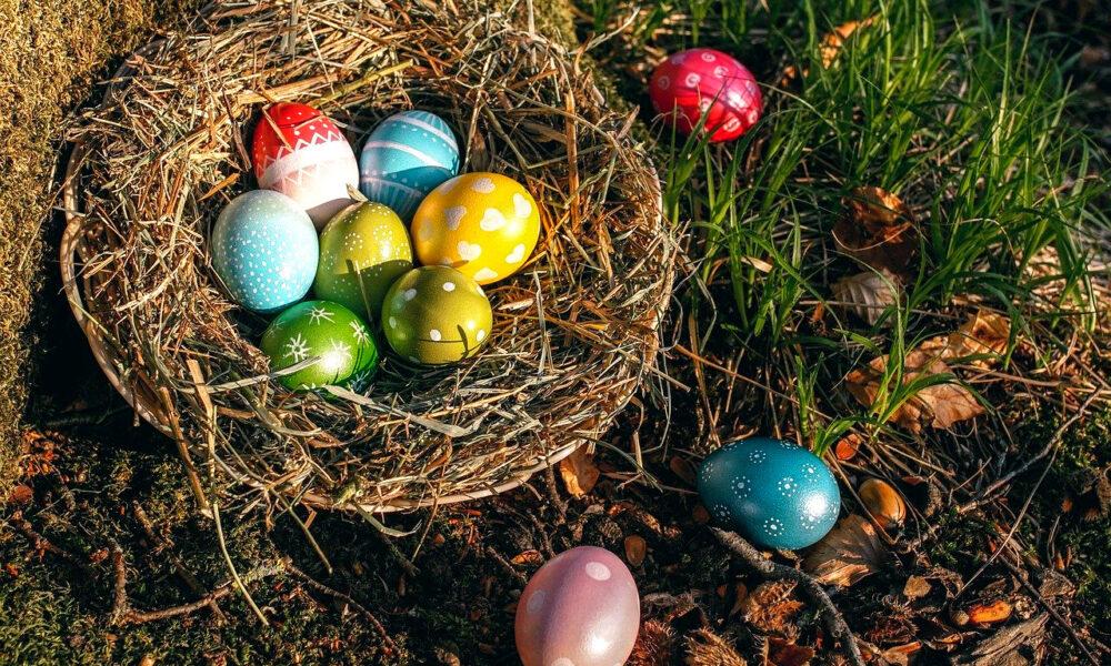 Ein Osternest Mit Bunten Eiern