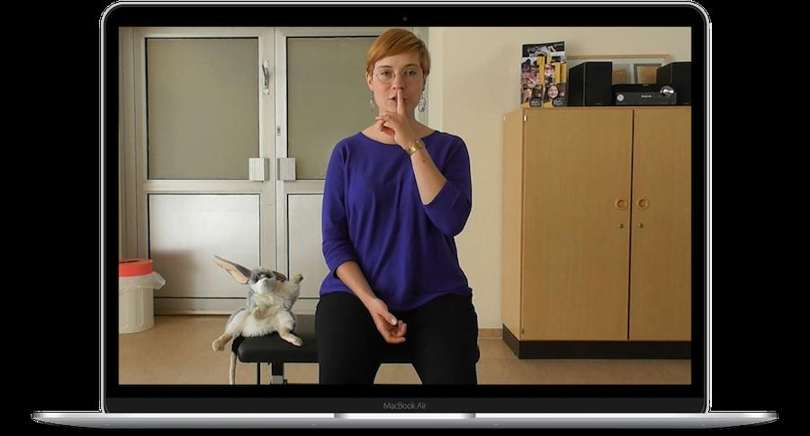 Screenshot: Digitale Unterrichtsangebote im Frühjahr 2020