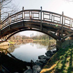 Teich Und Brücke Im Clara-Zetkin-Park