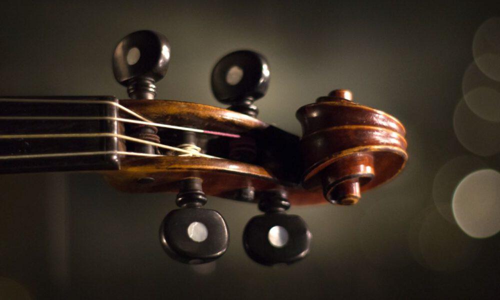 Kopf Einer Geige Mit Schnecke Und Stimmwirbeln