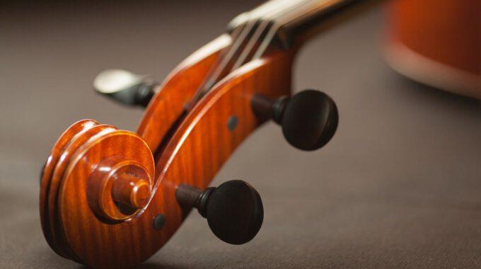 Violine Mit Schnecke Und Stimmwirbeln