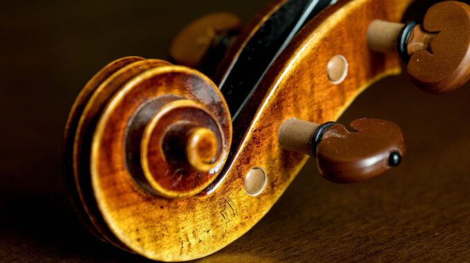 Kopf Einer Violine Auf Hölzernem Grund