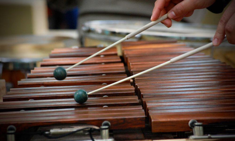 Ein Musiker Spielt Xylophon